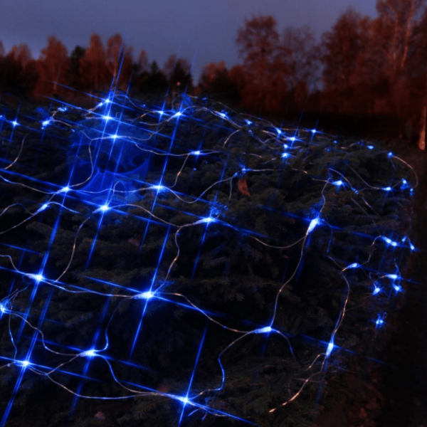 LED-Lichternetz | Serie LED | Outdoor | Transparentes Kabel | 90 blaue LED | 1.00m x 2.00m