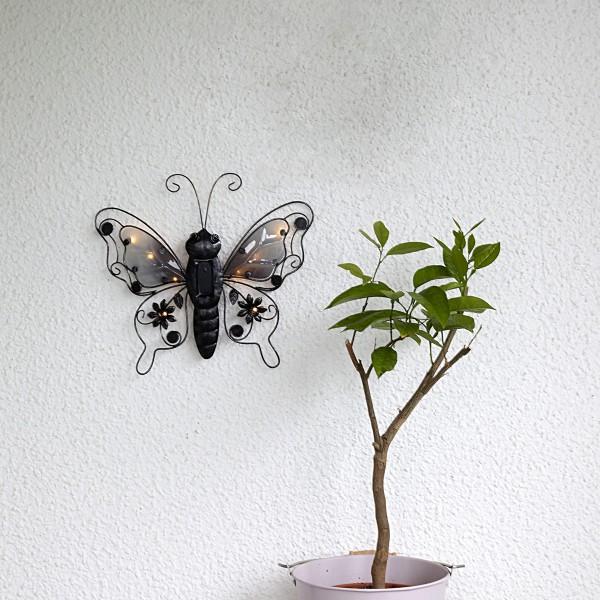 LED Solar Wanddeko Schmetterling - 8 warmweiße LED - H: 34cm - Dämmerungssensor - schwarz