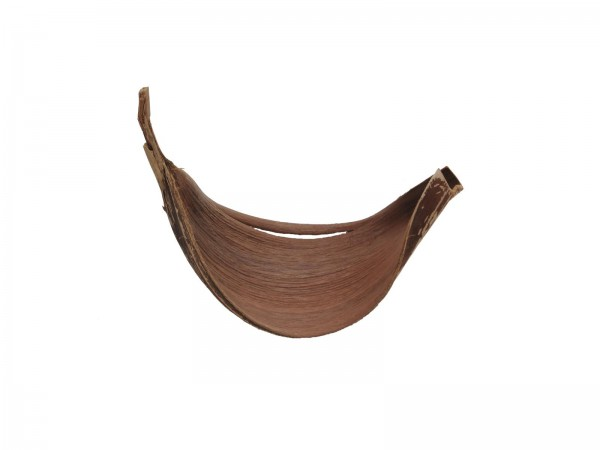 Kokosschale - Großes Galarablatt für Dekoration, getrocknet - natura - ca. 60cm
